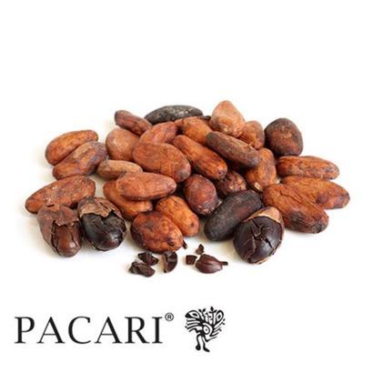 Pacari Organic Cacao Beans